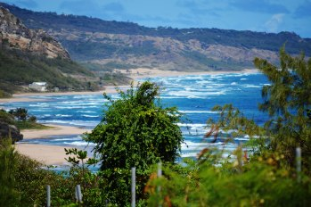 Lors de mon voyage dans les caraïbes, un arrêt à Barbade. Je me rends compte de l'importance de vivre au bord de la mer et combien la simplicité fait beauté. Sans oublier les beaux paysages et la connexion avec le beau blond, ce soleil sans lequel, nous serons pas aussi vivants.