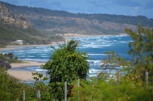 """Vue sur mer à """"Bathsheba"""", Barbade"""